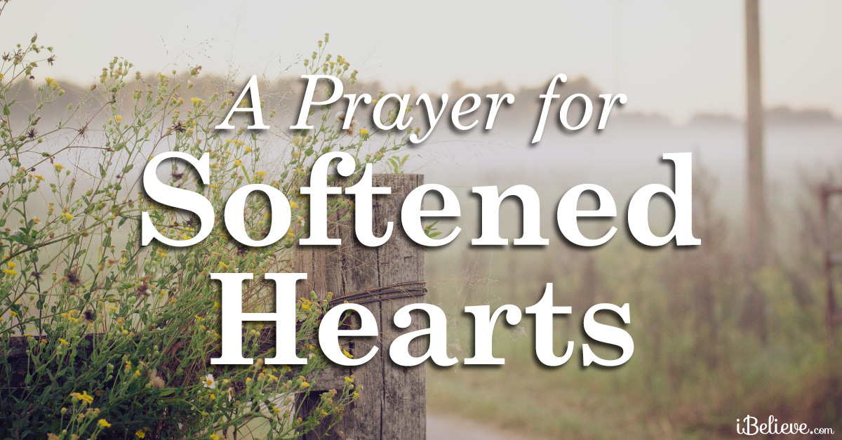 a prayer to soften hearts for the vulnerable